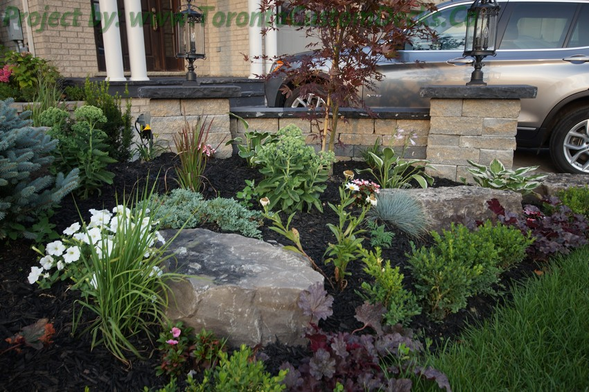 Plants For Japanese Garden Front Yards